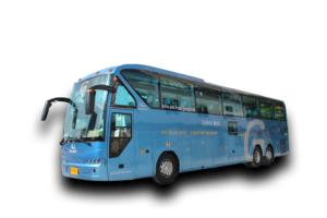 L-Bus Transaren new shadow